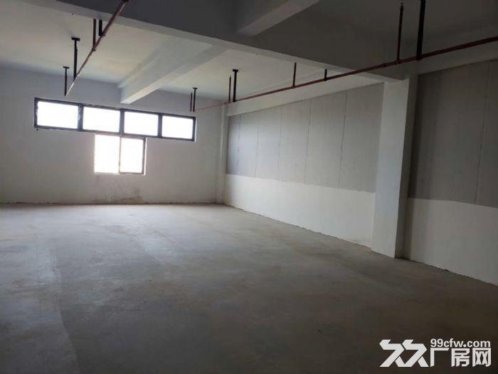 出租青浦工业园区845m²厂房,价格优惠可分割,可谈,地铁周边-图(2)