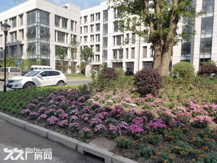 出租青浦工业园区845m²厂房,价格优惠可分割,可谈,地铁周边-图(5)