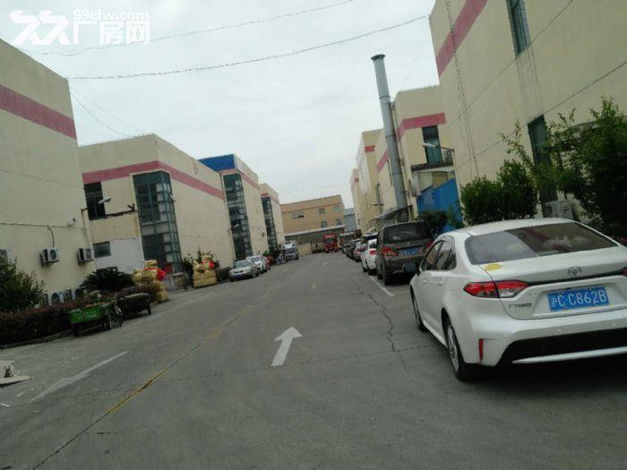 仅需0.9元出租赵巷104板块7500m²厂房价格优惠证件齐全可办环评-图(3)