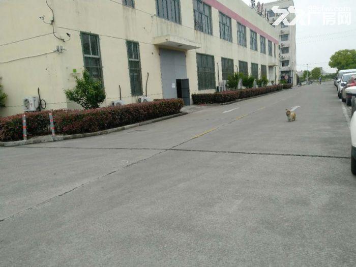 仅需0.9元出租赵巷104板块7500m²厂房价格优惠证件齐全可办环评-图(4)