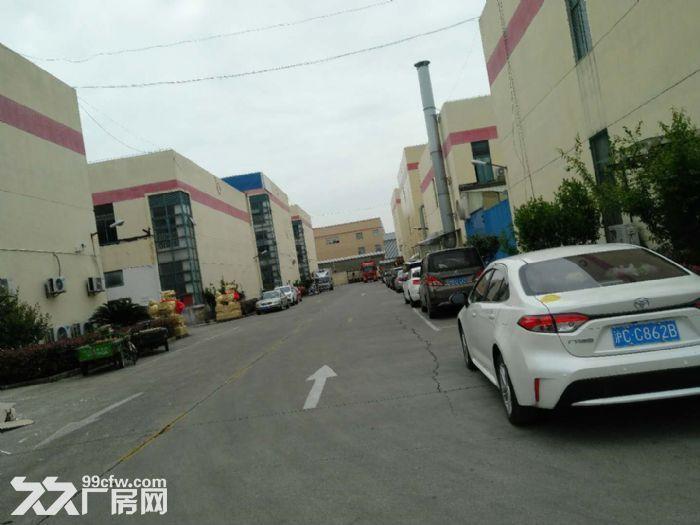仅需0.9元出租赵巷104板块7500m²厂房价格优惠证件齐全可办环评-图(7)