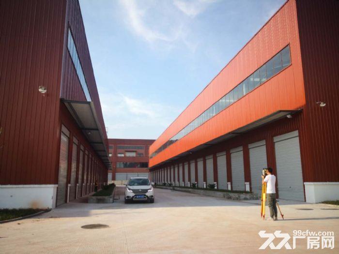 九龙工业园独栋钢结构厂房库房出租带空坝-图(3)