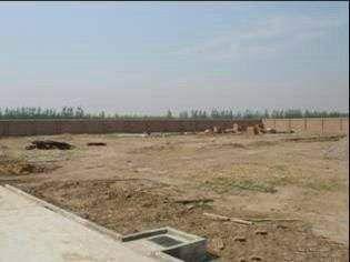出售济南周边,德州禹城高新区工业用地30亩-图(3)