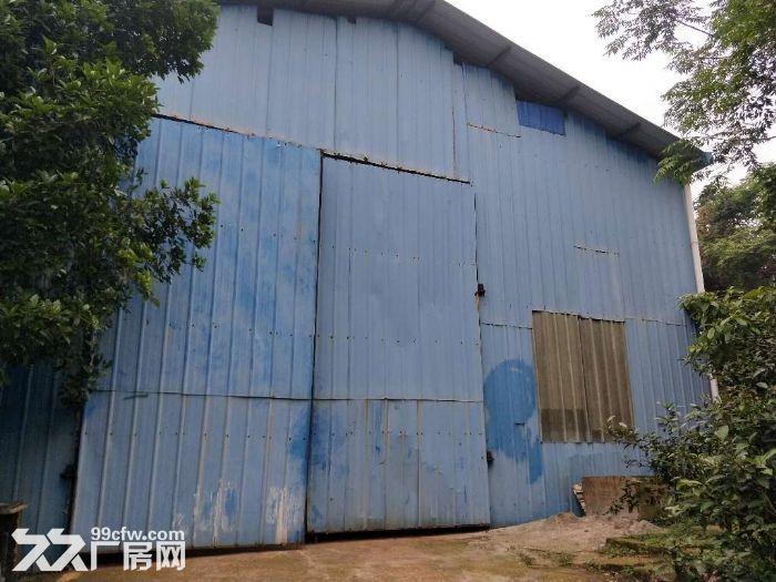 独门院可做油漆厂房700平方米5吨行吊-图(5)