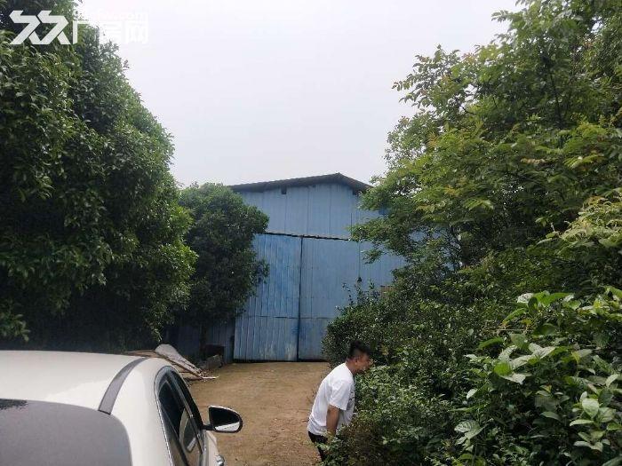 独门院可做油漆厂房700平方米5吨行吊-图(6)