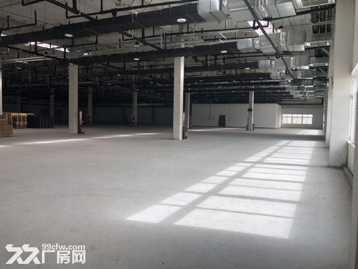 保定北三环8公里大王店工业园手续齐全可办证照随时看房随时起租-图(3)