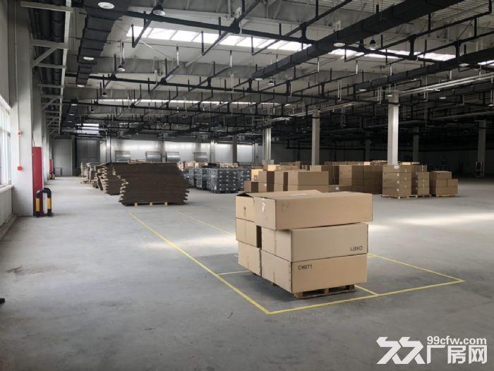 保定北三环8公里大王店工业园厂房环境好配套齐全手续齐全可办环评-图(5)