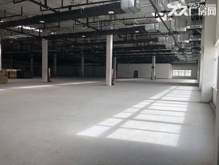 北三环8公里徐水大王店园区厂房办公楼出租手续齐全可生产可环评-图(3)