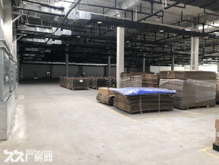 北三环8公里徐水大王店园区厂房办公楼出租手续齐全可生产可环评-图(6)