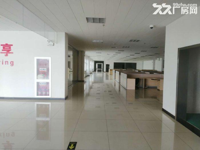 北三环8公里徐水大王店园区厂房办公楼出租手续齐全可生产可环评-图(7)