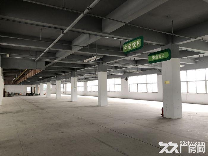 标准厂房出租/银凯孵化园1至5层招租-图(2)