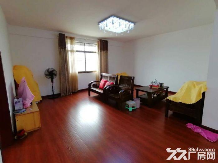 南屿六十份村民房整栋,两层精装修240平租3200元-图(2)
