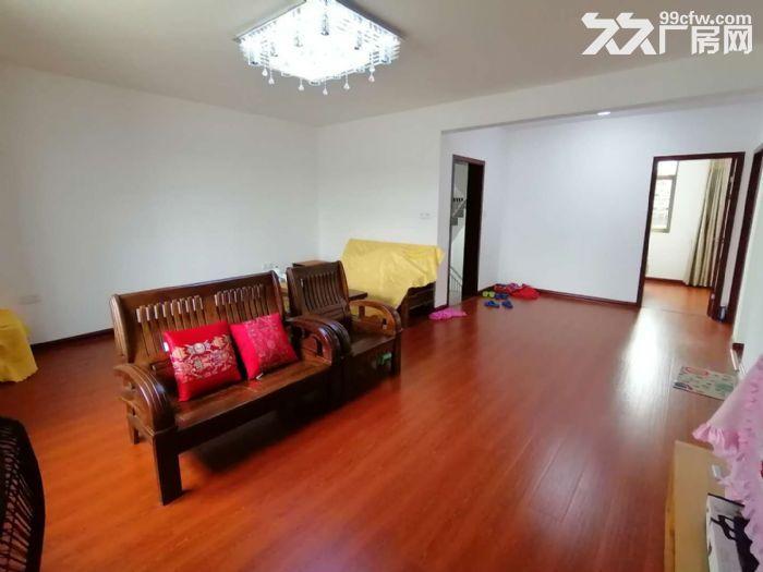 南屿六十份村民房整栋,两层精装修240平租3200元-图(4)