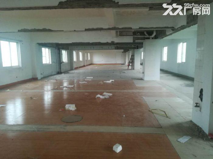 新西营里市场旁5楼400平标准厂房有货梯租8400元-图(1)