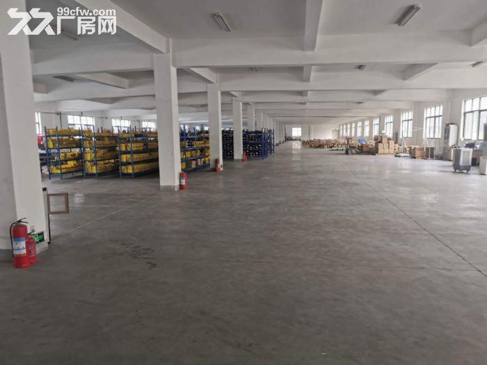 北港街道3000平方电商云仓招商-图(1)
