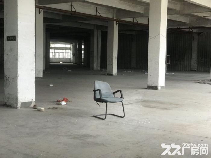 城东南浦工业区整栋厂房在出租一万平城东洛江我都有需要扣我哦!-图(3)