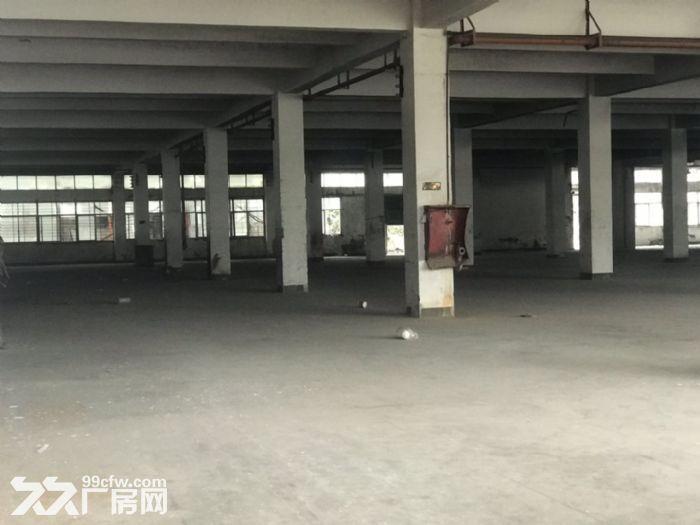 城东南浦工业区整栋厂房在出租一万平城东洛江我都有需要扣我哦!-图(2)