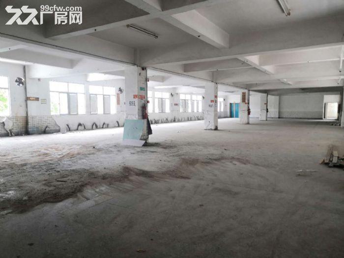 城东写字楼中凡大厦,超值9000平整层出租,省钱又省心-图(7)