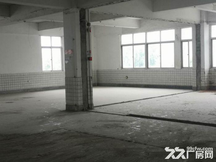 城东写字楼中凡大厦,超值9000平整层出租,省钱又省心-图(6)