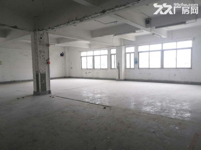 城东写字楼中凡大厦,超值9000平整层出租,省钱又省心-图(3)
