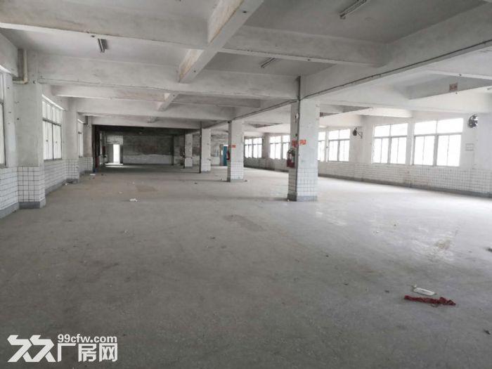 城东写字楼中凡大厦,超值9000平整层出租,省钱又省心-图(5)