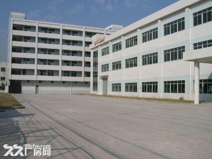 杏林灌口标准厂房出租,多种厂房多种面积,1楼+楼上都有,环评无限制,标准钢构带行-图(1)
