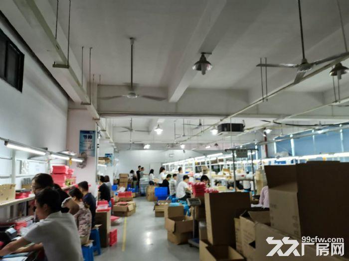 龙华龙胜福龙路出口新出楼上1400平精装厂房出租-图(4)