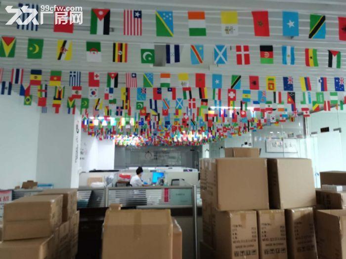 龙华龙胜福龙路出口新出楼上1400平精装厂房出租-图(6)