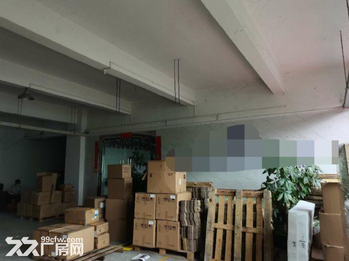 龙华龙胜福龙路出口新出楼上1400平精装厂房出租-图(7)