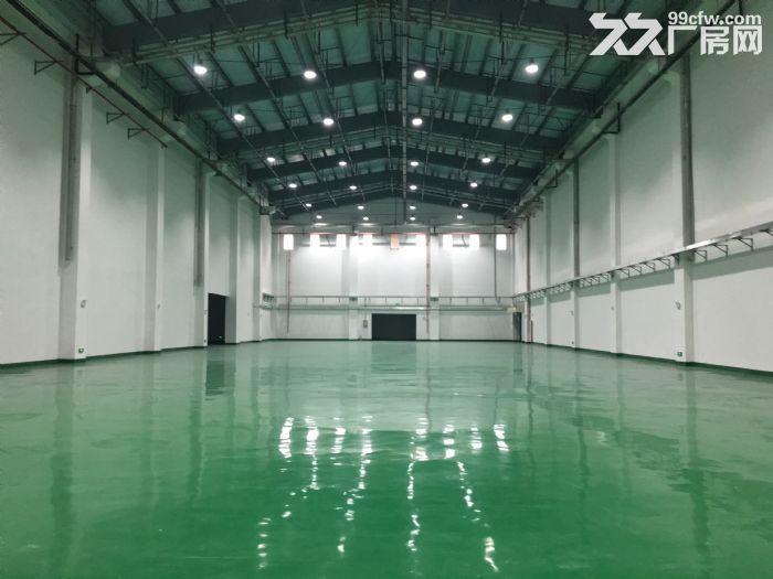 珠海横琴保税高标准仓库招租(超高16米高库、平层库)-图(3)