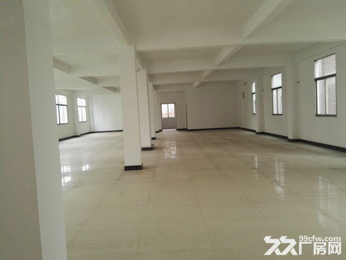司马浦镇1000平方房屋出租-图(2)