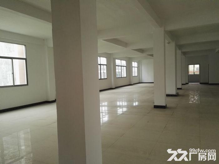 司马浦镇1000平方房屋出租-图(3)