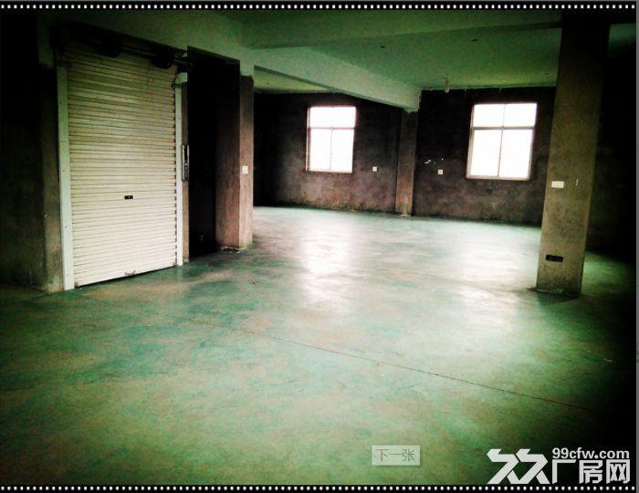 高性价比厂房出租−550平方−路桥桐屿街道民主工业园区旁-图(1)
