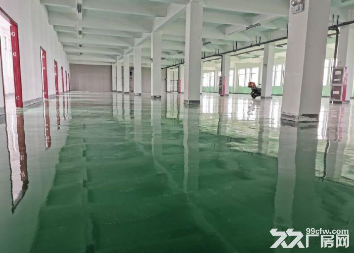 苏州吴中区越溪一楼300平米,800平米厂房出租-图(1)