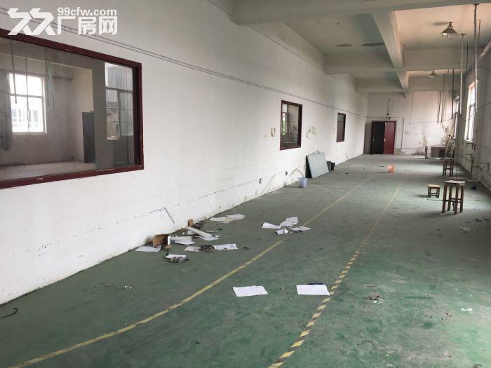 苏州吴中区郭巷280平米办公厂房出租-图(4)