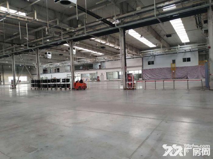 钢架厂房空置地块随时起租挑高10米配套齐全价格低-图(5)