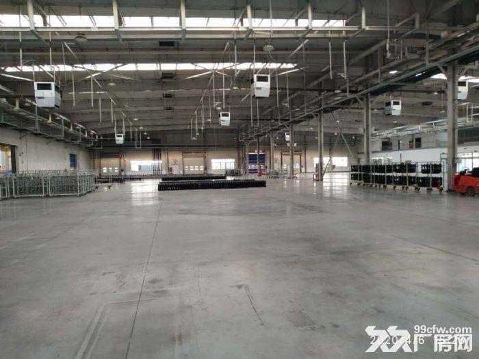 钢架厂房空置地块随时起租挑高10米配套齐全价格低-图(6)