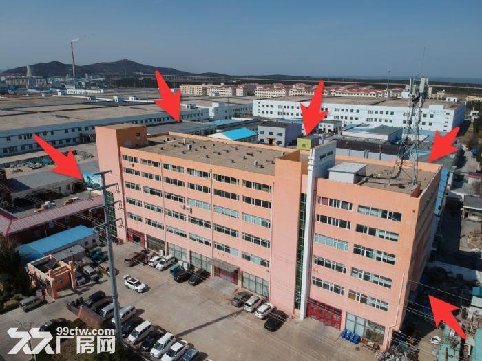 (租售)张村750平−1600平厂房可分租价格面议-图(2)