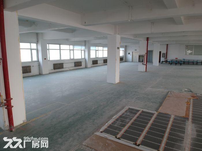 (租售)张村750平−1600平厂房可分租价格面议-图(5)