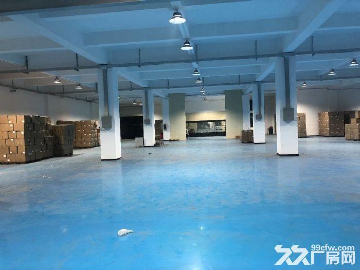 金平工业区纯楼下混凝土结构680平正规工业厂房-图(1)