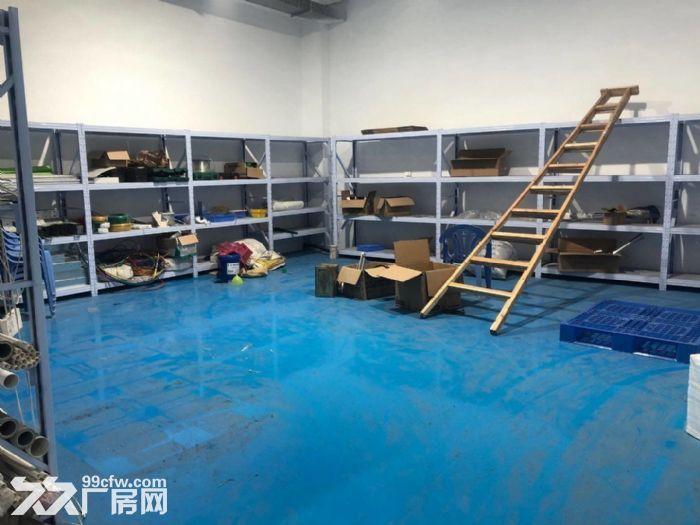 金平工业区纯楼下混凝土结构680平正规工业厂房-图(4)