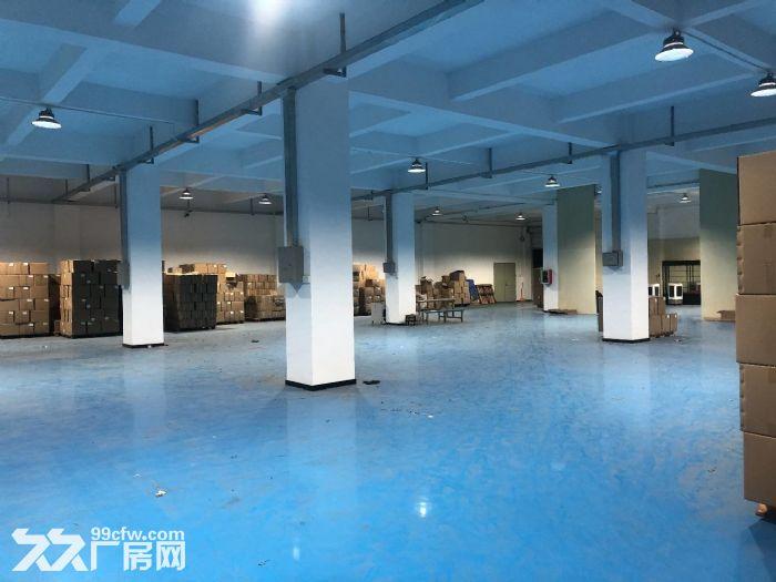 金平工业区纯楼下混凝土结构680平正规工业厂房-图(5)