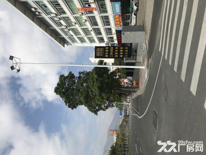 优质临街店铺招租,厂房写字楼招租-图(3)