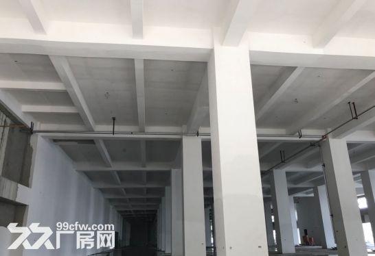 天津东疆丰驰汽车保税展示中心-图(5)