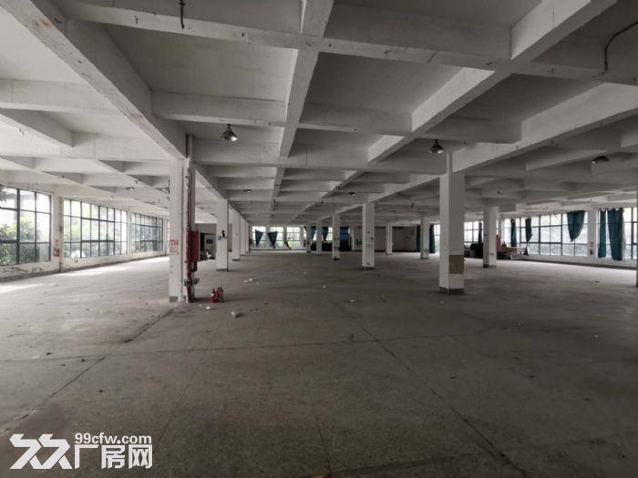 11000平方米,浦口区、星甸街道标准框架工业厂房(独院)-图(3)