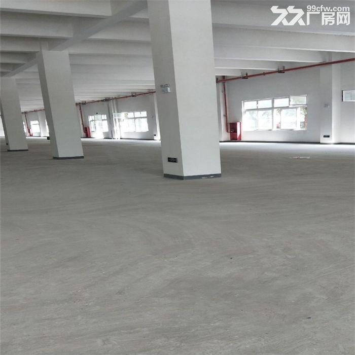吴江汾湖开发区2000至10000平米,层高12米-图(5)