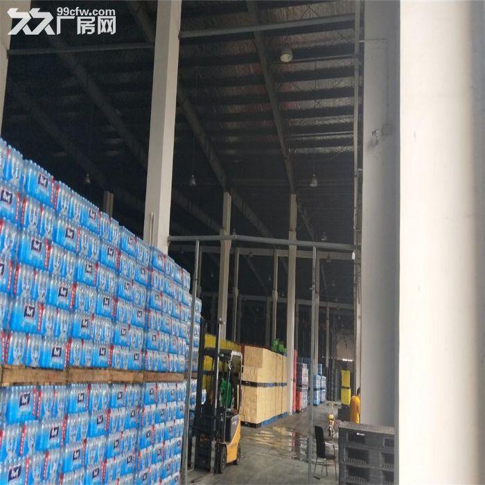 吴江区单层厂房八坼3200平米出租,层高7米-图(4)