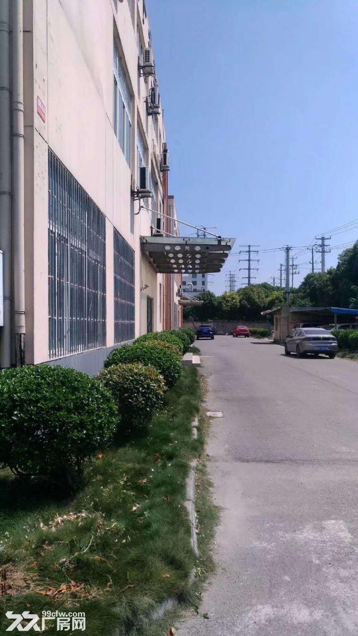 1800平方一楼厂房出租-图(2)