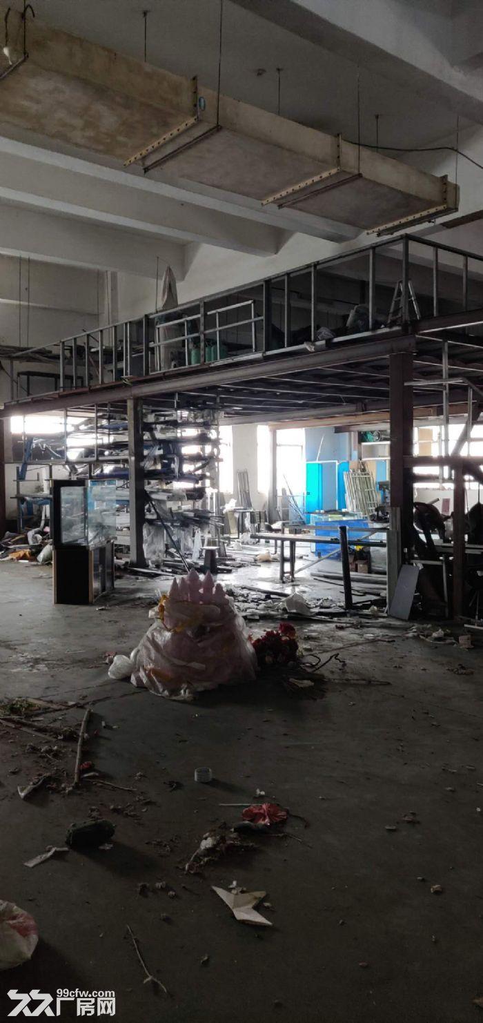 吴中城南东吴南路附近纯一楼800平米标准厂房出租-图(5)