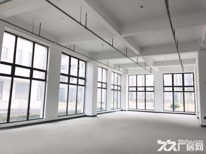 S中南高科长三角多个园区独栋厂房出售800平起售独栋三层首层8.1米,-图(1)